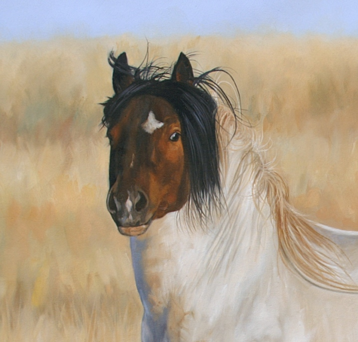 horse commission wildlife art